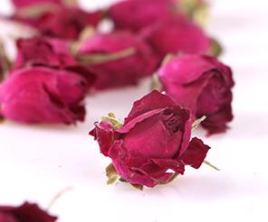 特级玫瑰花蕾